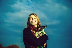 A menina bonita guarda o terrier de brinquedo fotos de stock royalty free