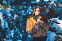 Menina bonita na floresta do inverno Fotos de Stock