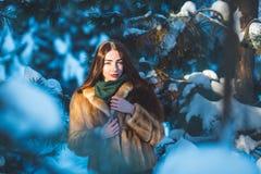 Menina bonita na floresta do inverno Fotografia de Stock