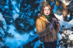 Menina bonita na floresta do inverno Fotografia de Stock Royalty Free