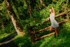 Menina bonita nas madeiras Fotos de Stock