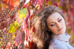 Menina bonita no parque do outono Fotografia de Stock Royalty Free