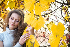Menina bonita no parque do outono Imagens de Stock