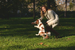 A menina bonita no parque que faz a obediência excersize com seu rei descuidado Charles Spaniel do cão Imagens de Stock