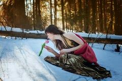 Menina bonita no vestido dourado que senta-se nas madeiras do sol da neve na primavera e na tulipa dos toques fotografia de stock royalty free