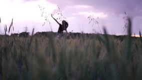 Menina bonita no vestido que anda no campo direto que toca nas orelhas do trigo no por do sol vídeos de arquivo