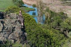 A menina bonita no vestido senta-se na rocha na natureza fotos de stock royalty free