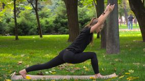 A menina bonita nova contratada na ioga Foto de Stock Royalty Free
