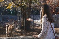 Menina bonita nova e cervos pequenos no jardim zoológico da cidade Fotografia de Stock Royalty Free
