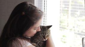 Menina bonita nova que joga com um gato na janela vídeos de arquivo