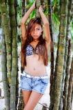 Menina bonita nova que levanta com as árvores do bamoo, conceito quente da forma do verão Imagens de Stock
