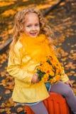Menina bonita pequena com cabelo louro no fundo do outono fotografia de stock