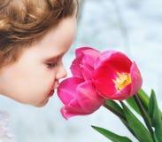 Menina que cheira tulipas vermelhas imagem de stock royalty free