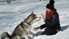 Menina bonita que joga com cão filme