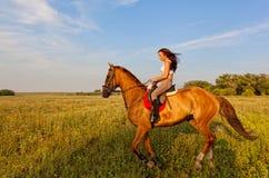 Menina bonita que monta um cavalo Imagens de Stock Royalty Free