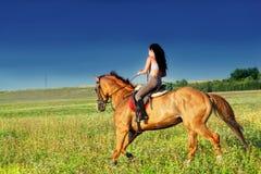 Menina bonita que monta um cavalo Imagem de Stock Royalty Free