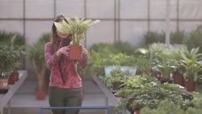 Menina bonita que põe flores ao trole video estoque