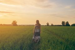 Menina bonita que sorri no campo do por do sol fotografia de stock royalty free
