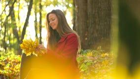 A menina bonita senta-se na floresta do outono e recolhe-se um ramalhete das folhas de bordo amarelas vídeos de arquivo