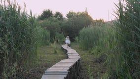 Menina bonito ativa da criança nas corridas brancas do vestido ao longo da ponte de madeira na natureza entre a vegetação verde video estoque