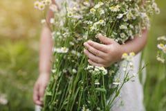 Menina bonito com um ramalhete das camomilas no fundo do campo verde imagem de stock royalty free