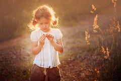 Menina bonito da criança com a flor selvagem no campo do por do sol do verão Fotos de Stock Royalty Free