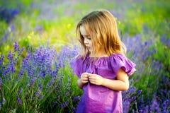 A menina bonito feliz está em um campo da alfazema está vestindo o vestido lilás que guarda o ramalhete de flores roxas imagens de stock royalty free