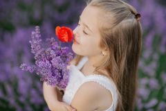 Menina bonito feliz no campo da alfazema que guarda o ramalhete de flores roxas foto de stock