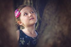 Menina bonito nas madeiras fotos de stock