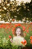 Menina bonito no campo da papoila fotos de stock royalty free
