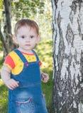 A menina bonito pequena perto da árvore de vidoeiro imagem de stock royalty free