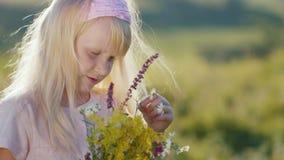 Menina bonito que aprecia a natureza, olhando o ramalhete dos wildflowers filme