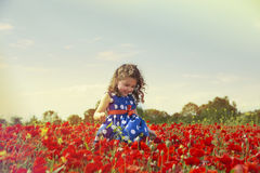 Menina bonito que corre no campo da papoila imagens de stock royalty free