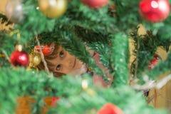 Menina bonito que decora a árvore de Natal imagem de stock