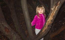 Menina bonito que joga em uma floresta imagens de stock