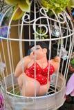 Menina carnudo Foto de Stock