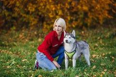A menina caucasiano bonita joga com o cão ronco na floresta do outono imagem de stock