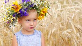 Menina caucasiano em um campo das flores Uma criança em um campo no campo Retrato de um fim da menina acima video estoque