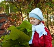A menina cheira as folhas foto de stock royalty free