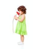 A menina cheira a flor da margarida africana no estúdio fotografia de stock royalty free