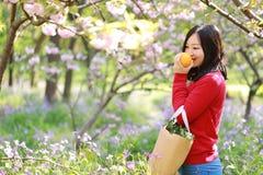 A menina chinesa asiática da beleza da mulher em um campo de flor em uma laranja do fruto do cheiro do parque do outono do verão  fotografia de stock royalty free
