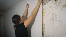 A menina cola no papel de parede da sala vídeos de arquivo