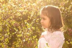 Menina com as flores da mola na natureza Fotos de Stock