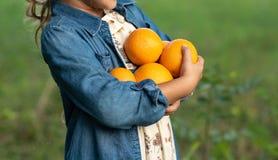 Menina com as laranjas no pomar alaranjado Irmãs bonitas com a laranja orgânica no jardim Conceito da colheita Jardim, adolescent fotos de stock