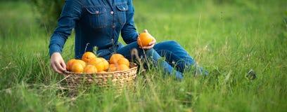 Menina com as laranjas no pomar alaranjado Irmãs bonitas com a laranja orgânica no jardim Conceito da colheita Jardim, adolescent fotografia de stock royalty free