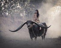 A menina com búfalo Fotos de Stock Royalty Free