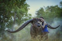 A menina com búfalo Fotos de Stock