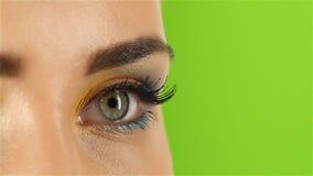 A menina com bonito brilhante compõe, mostras do artista do visagiste seu profissionalismo Fim acima Tela verde video estoque