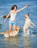 Menina com cães Foto de Stock Royalty Free