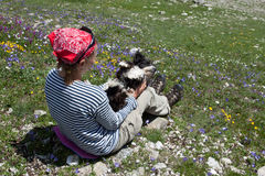 Menina com cão. Foto de Stock Royalty Free